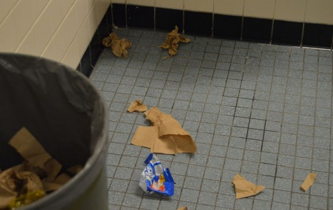 Who is to blame for the condition of Springbrook's bathrooms?