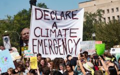 The Climate Movement in the US and Argentina