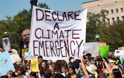 The Climate Movement Across the World — Part 1